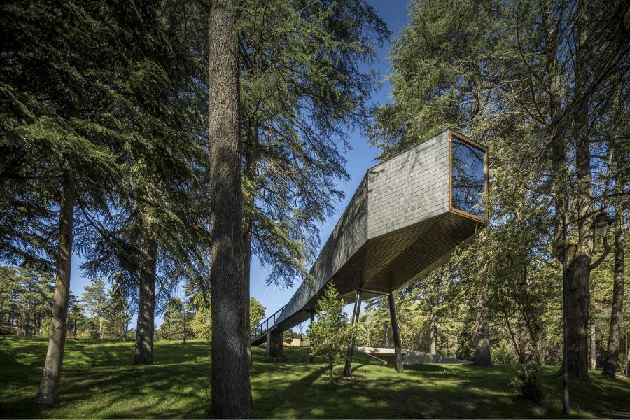 treesnakehouse_12